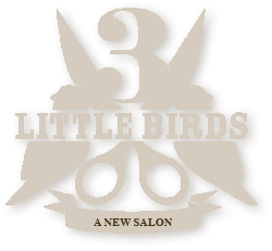3 little birds salon uptown denver hair salon